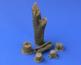 TREE TRUNKS and STUMPS